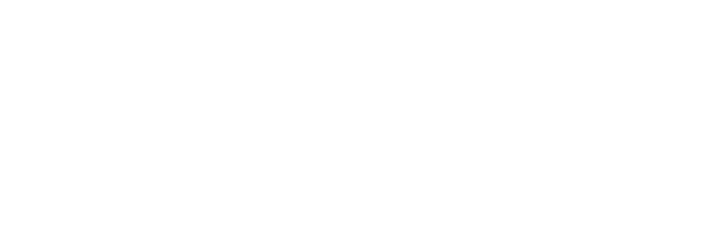 sweet licks custom guitars logo image
